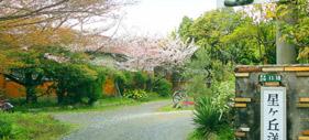 星ヶ丘洋裁学校 桜花祭 2020